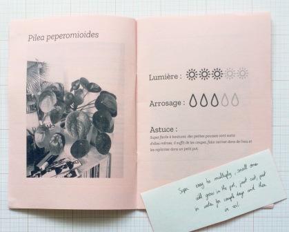 AfterlightImage (4)